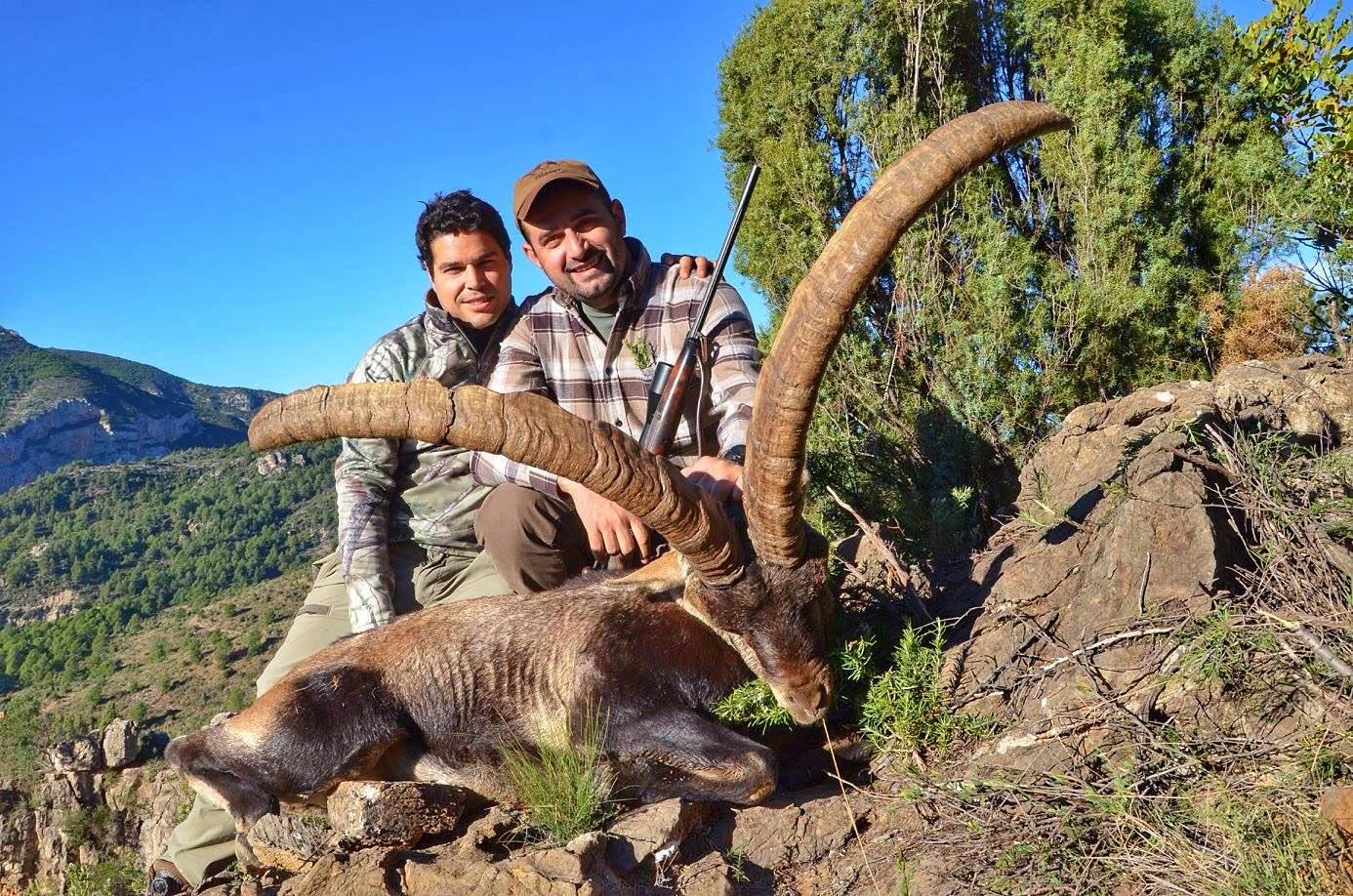 combo spanish ibex beceite web